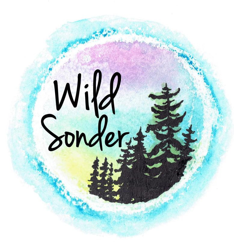 Wild Sonder logo